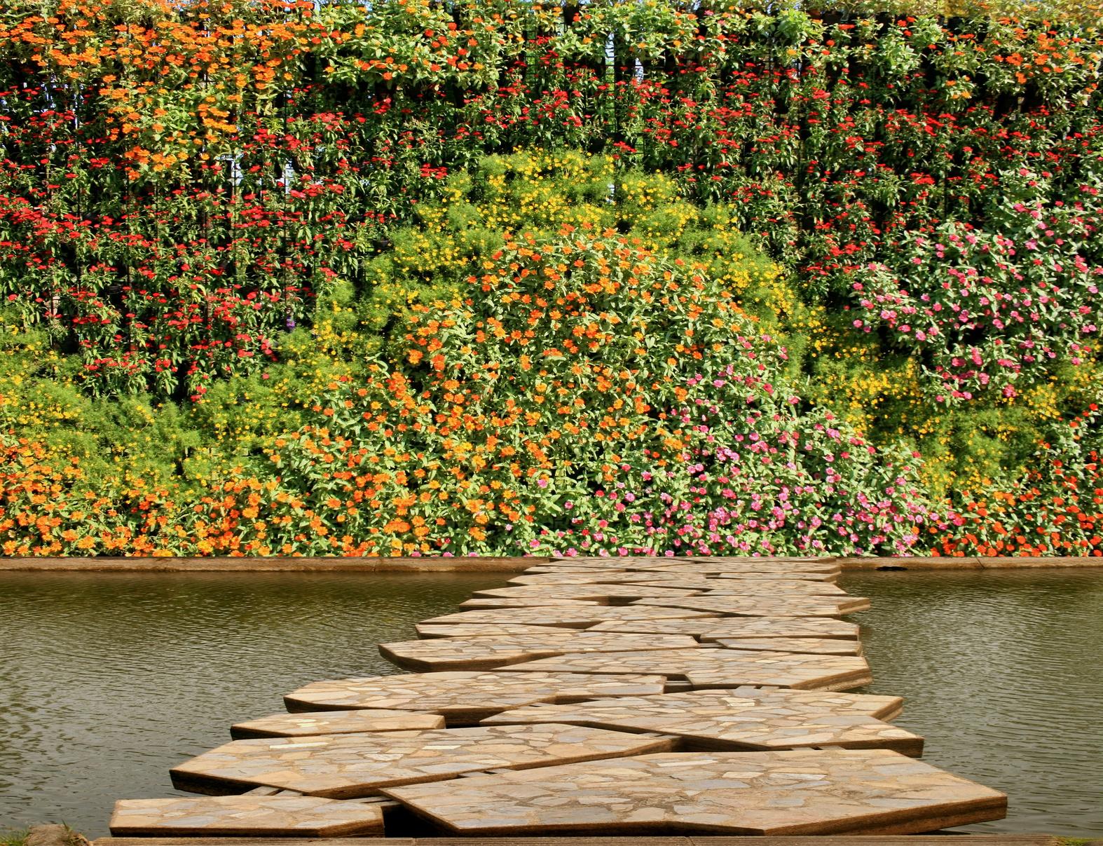 Exceptional Plantes Pour Mur Vegetal Exterieur #3: Mur-végétal-extérieur.jpg